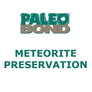 METEORITE PRESERVATION