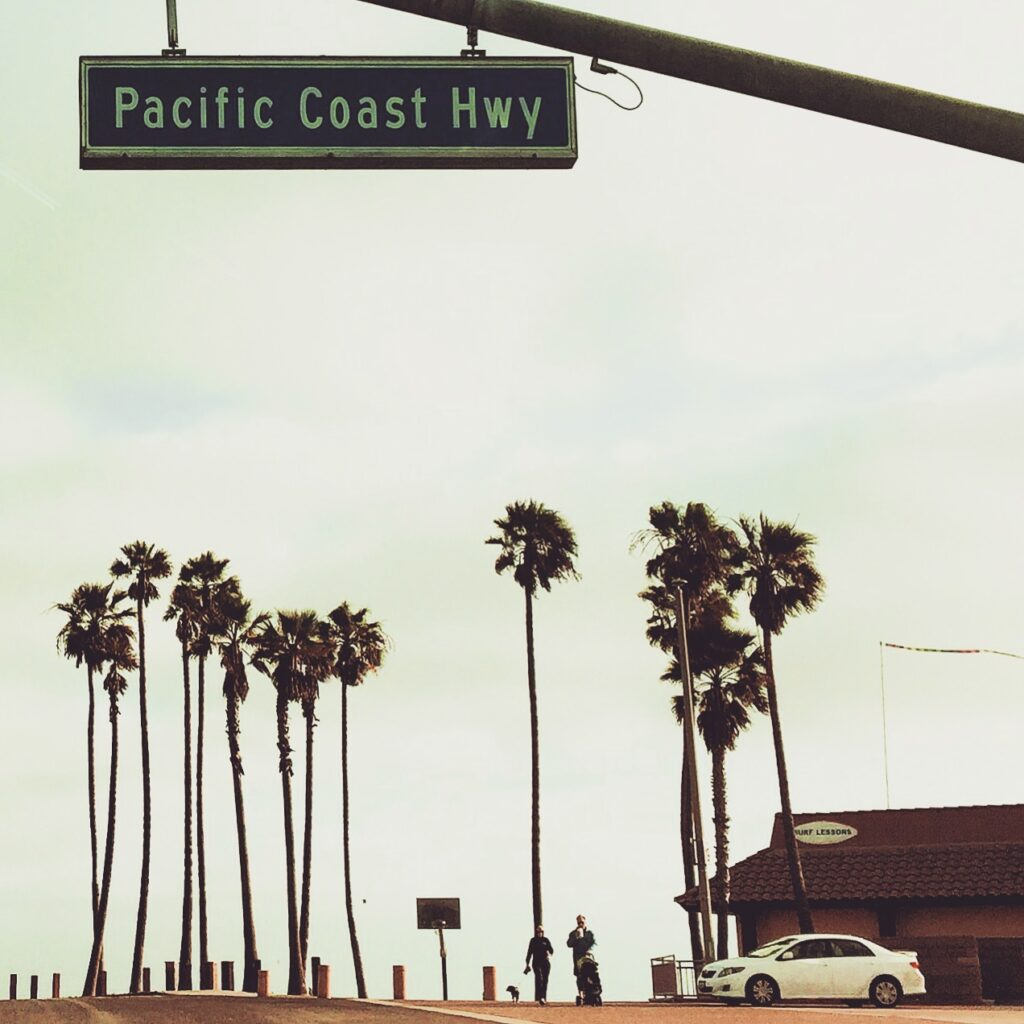 Pacific Coast Highway sign with palm trees.