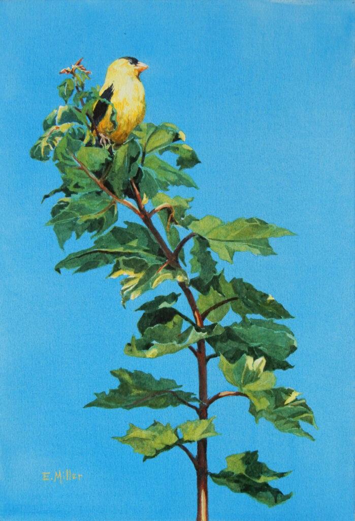 Eric Miller Artist #10 Vantage Point Watercolor $300