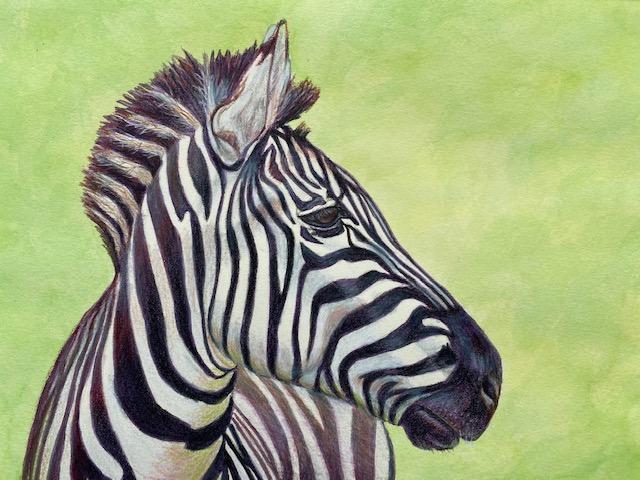 Diane Kinney 333 Zebra other media $150