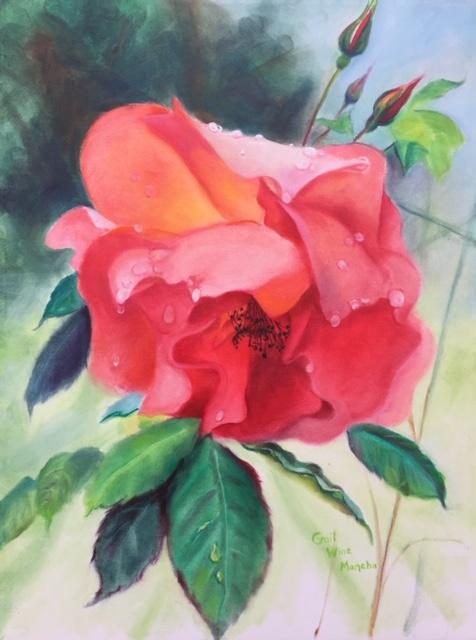 "Gail Wine Mancha Oil on canvas, 18"" x 24"" Rose in Morning Rain, $250"