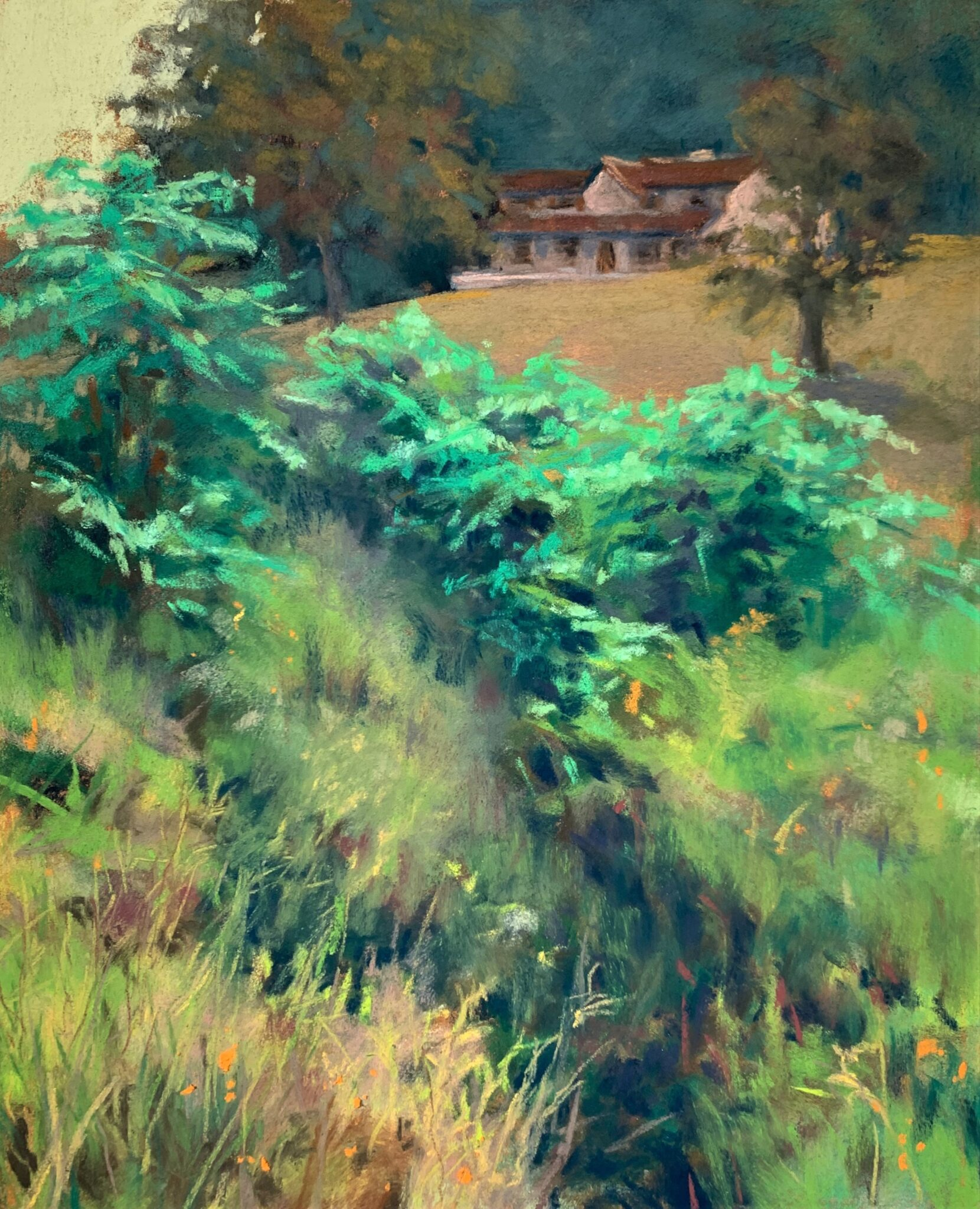 Mary Moores Artist number #31 Hilltop View other media $300