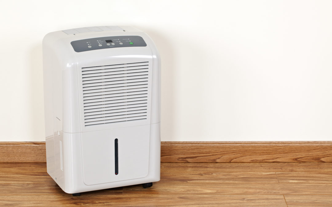 The Benefits of Using a Dehumidifer in the Spring