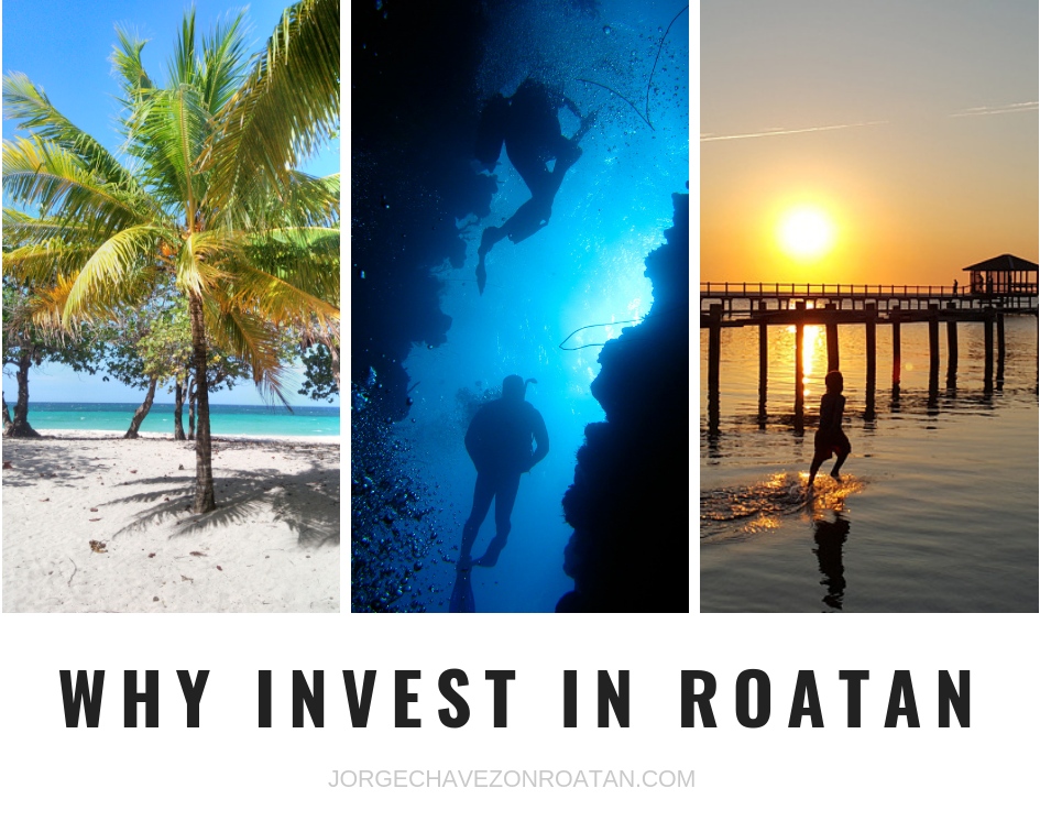 wy invest in Roatan