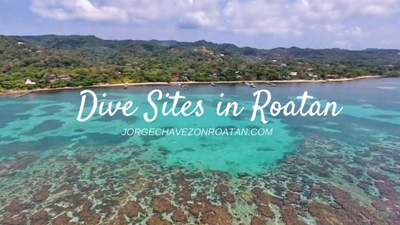 Dive sites in Roatan