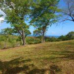 Properties for sale in roatan