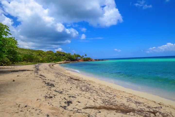 Cam Bay beach for sale
