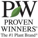 Proven Winners