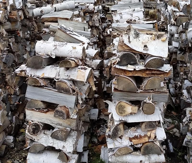 birch-stacked