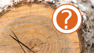 Seasoned Firewood Question