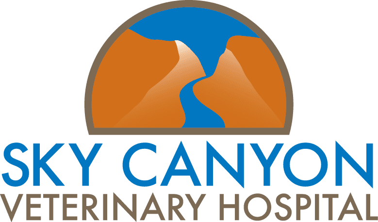 Sky Canyon Vet Hospital