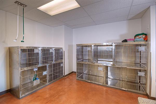 Sky Canyon Veterinary Hospital