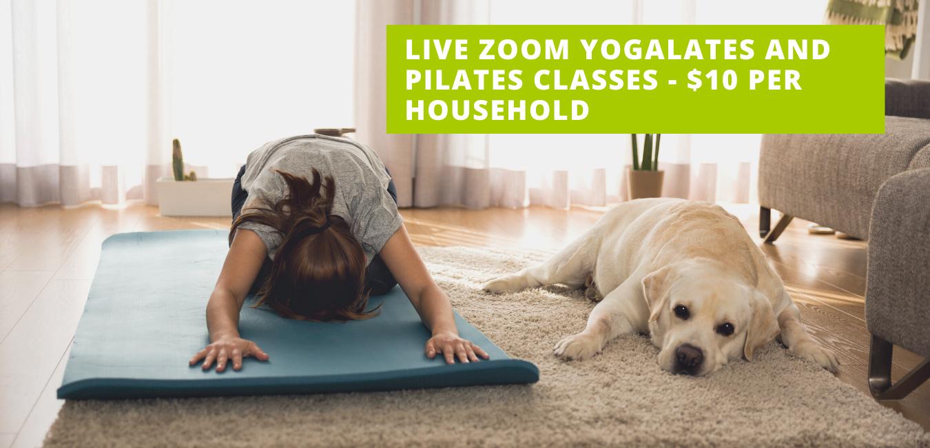 Vita website zoom classes