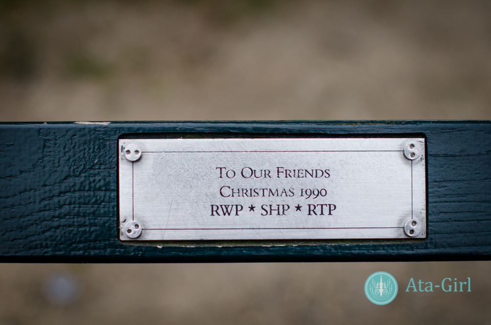 centra_park_benches_wedding_photographers_atagirl_photographyd7i_1770-jpg