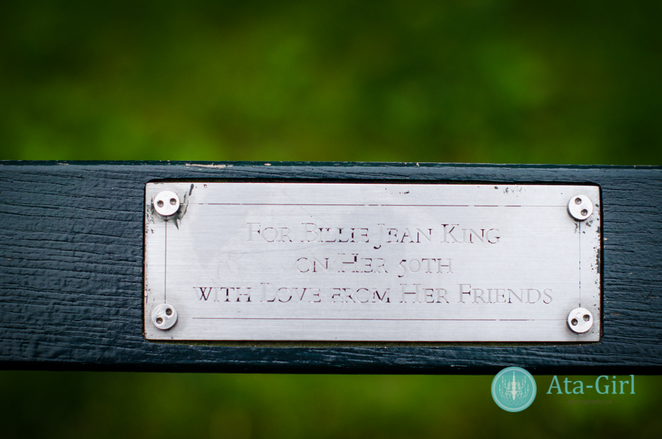 centra_park_benches_wedding_photographers_atagirl_photographyd7i_1771-jpg