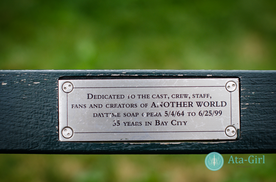 centra_park_benches_wedding_photographers_atagirl_photographyd7i_1774-jpg