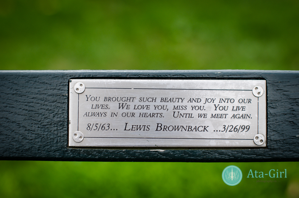 centra_park_benches_wedding_photographers_atagirl_photographyd7i_1775-jpg