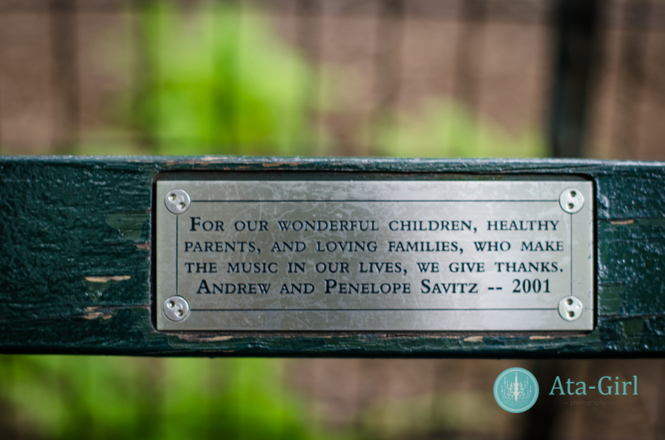 centra_park_benches_wedding_photographers_atagirl_photographyd7i_1780-jpg