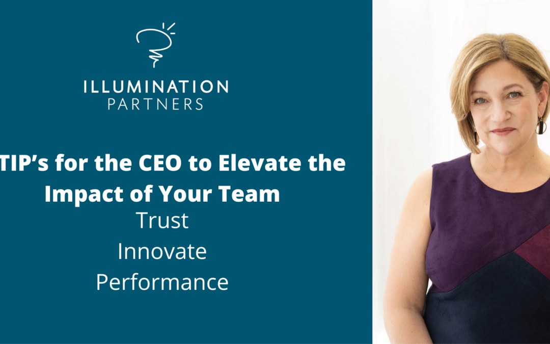 3 TIP's for the CEO to Elevate the Impact of Your Team
