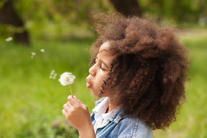 Lovely girl blowing on a dandelion