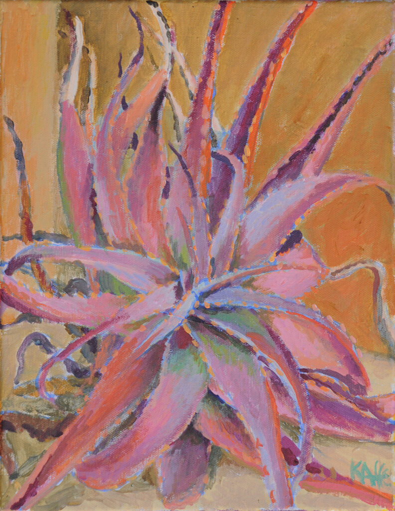 Succulent, Pink and Orange