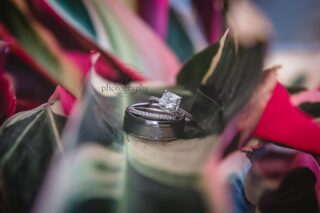 Who doesn't love a good ring shot! We are all about the details when it comes to weddings. We always recommend to our couples that we arrive early enough to get all the beautiful details.⠀⠀⠀⠀⠀⠀⠀⠀⠀ .⠀⠀⠀⠀⠀⠀⠀⠀⠀ .⠀⠀⠀⠀⠀⠀⠀⠀⠀ .⠀⠀⠀⠀⠀⠀⠀⠀⠀ .⠀⠀⠀⠀⠀⠀⠀⠀⠀ #oceansidewedding #danapointwedding #sandiegophotographer #lagunabeachweddingphotographer #californiaphotographer #elopelagunabeach #danapointelopement #californiamicrowedding #beachwedding #harborwedding #danapointharbor⠀⠀⠀⠀⠀⠀⠀⠀⠀ #destinationwedding #elopementphotographer #dunedinweddingphotographer #altphotographyfl #cali #floridaphotographer #tciphotographer #stpetebeachbride #treasureislandphotographer #tampabaywedding #elopetreasureisland #hotspringsphotographer #ashevilleweddingphotographer #wedo2021 #marriedca
