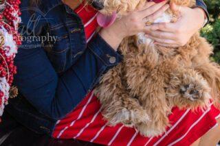 Puppy paws 🐾 ⠀⠀⠀⠀⠀⠀⠀⠀⠀ .⠀⠀⠀⠀⠀⠀⠀⠀⠀ .⠀⠀⠀⠀⠀⠀⠀⠀⠀ .⠀⠀⠀⠀⠀⠀⠀⠀⠀ .