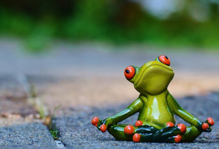 frog-yoga