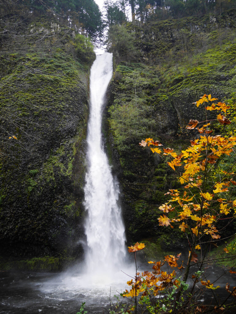 Portland Adventures - Waterfalls
