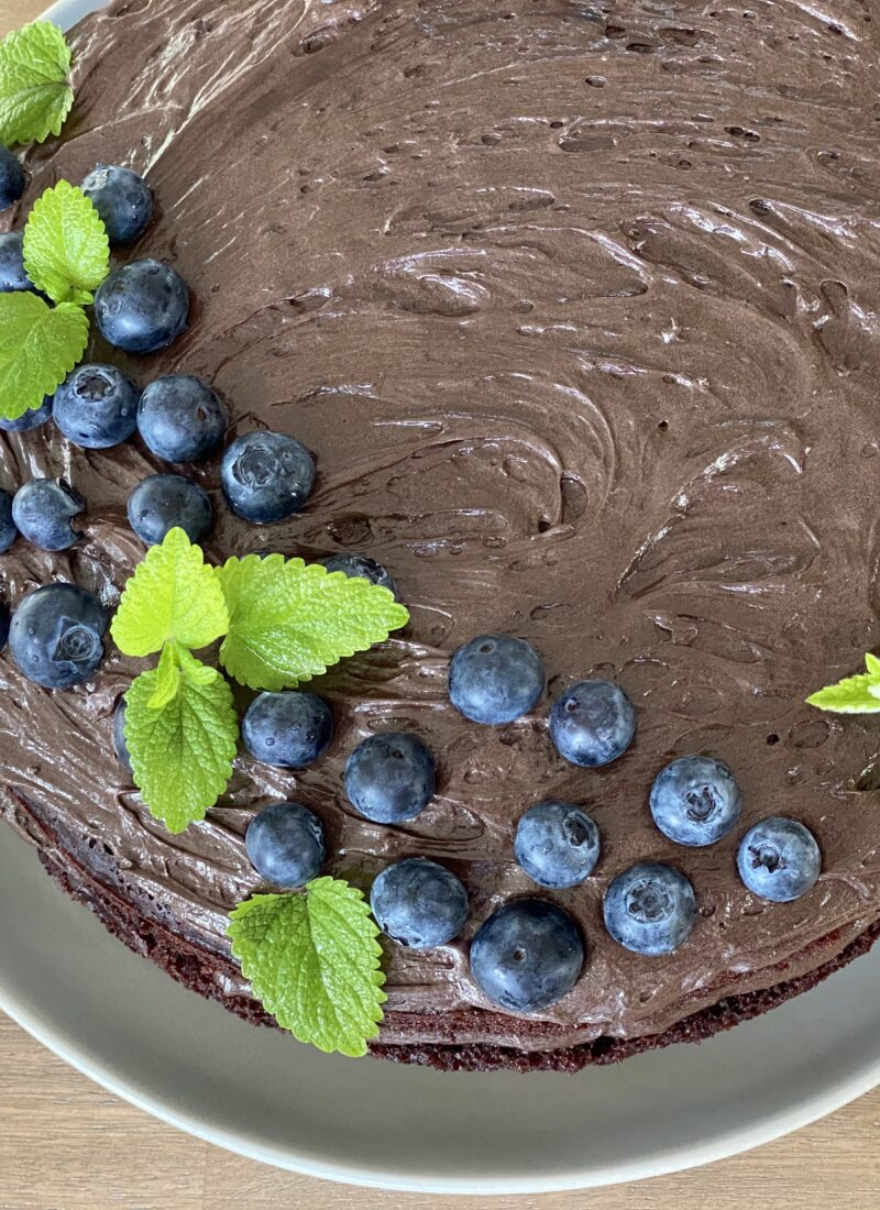 Decadent Chocolate Cake with Dark Rum Chocolate Frosting (vegan and gluten free!)