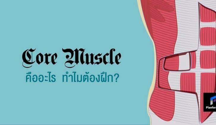 กล้ามเนื้อ core muscle