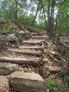 Georgetown TX Pickett Trail Steps