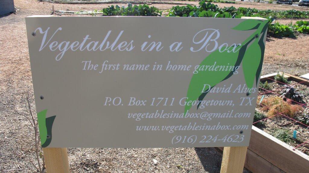 Georgetown TX Organic Garden