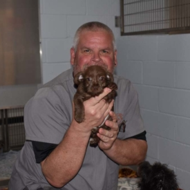 Western-Arizona-Humane-Society2