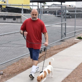 Western-Arizona-Humane-Society5