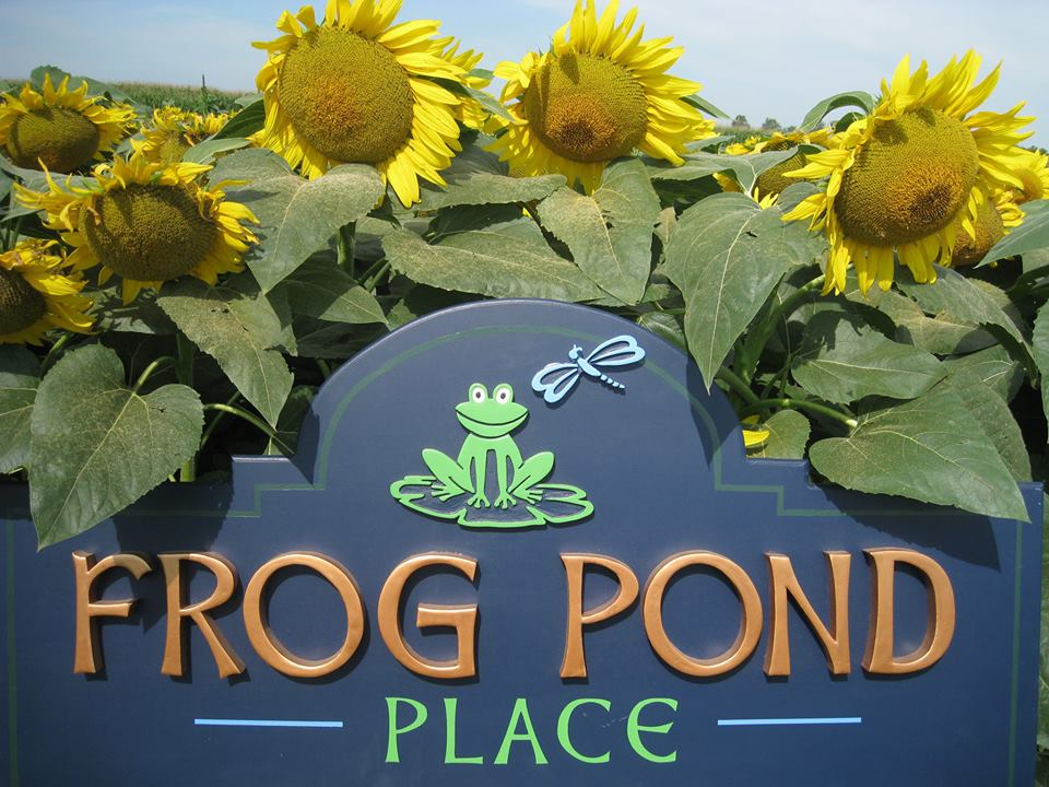Frog Pond Place Installed
