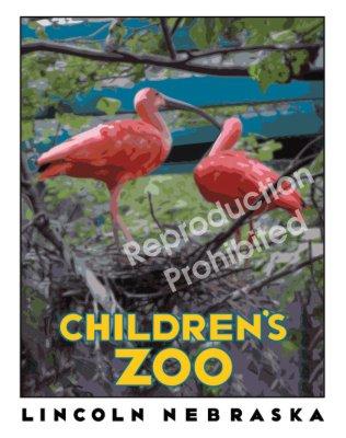 Zoo_Birds