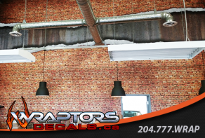 wraptors-wall-mural