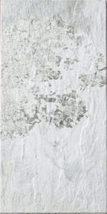 Slate White 12 X 24