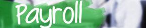 Lang Allan & Company Payroll Services