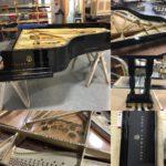 Amadeus Piano Restoration