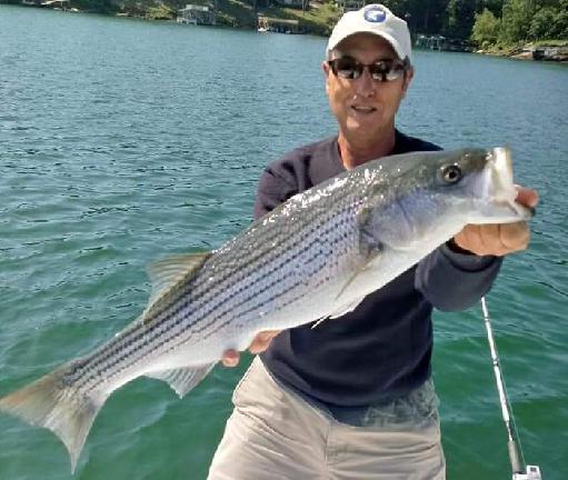 No Excuses Striper Fishing Charter Guide on Lake Lanier