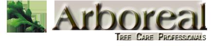 tree care arborist blue mountain ontario
