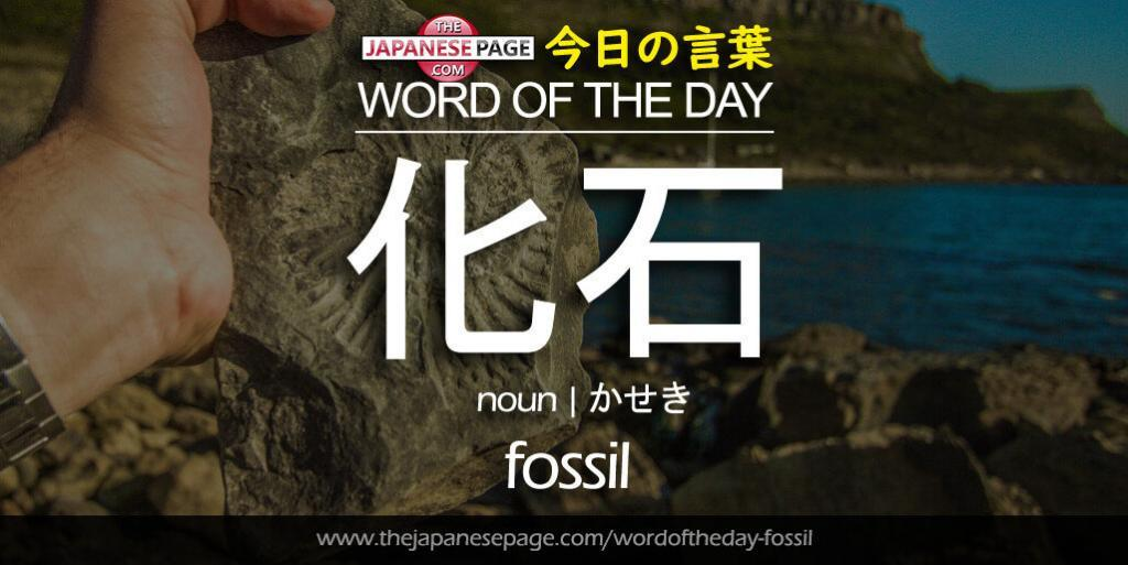 The Japanese Page Word of The Day - Fossil