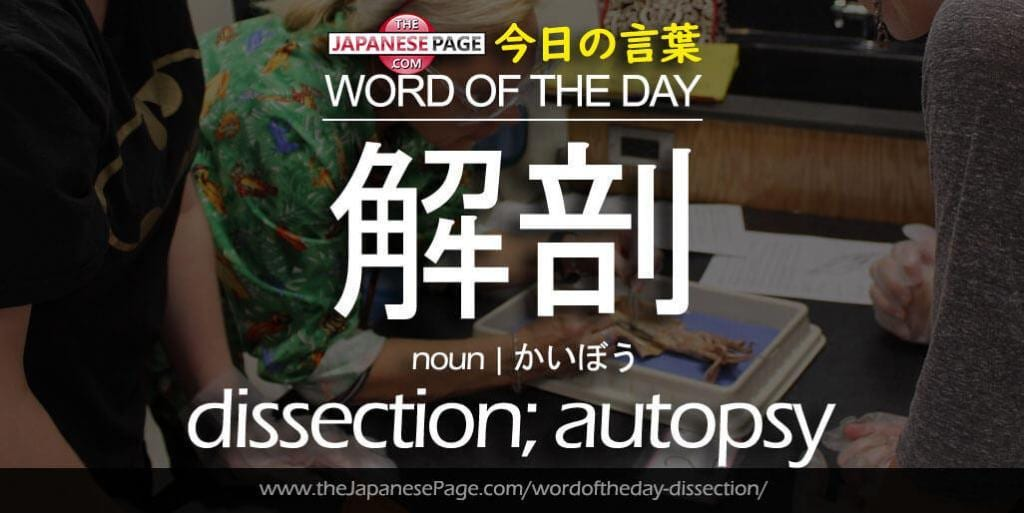 The Japanese Page Word of The Day - Dissection, Autopsy