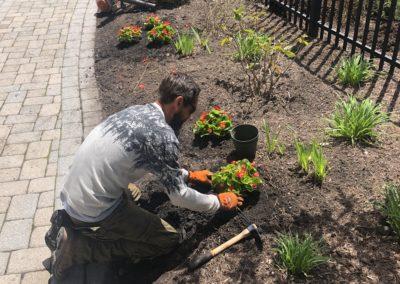 Grounds Maintenance