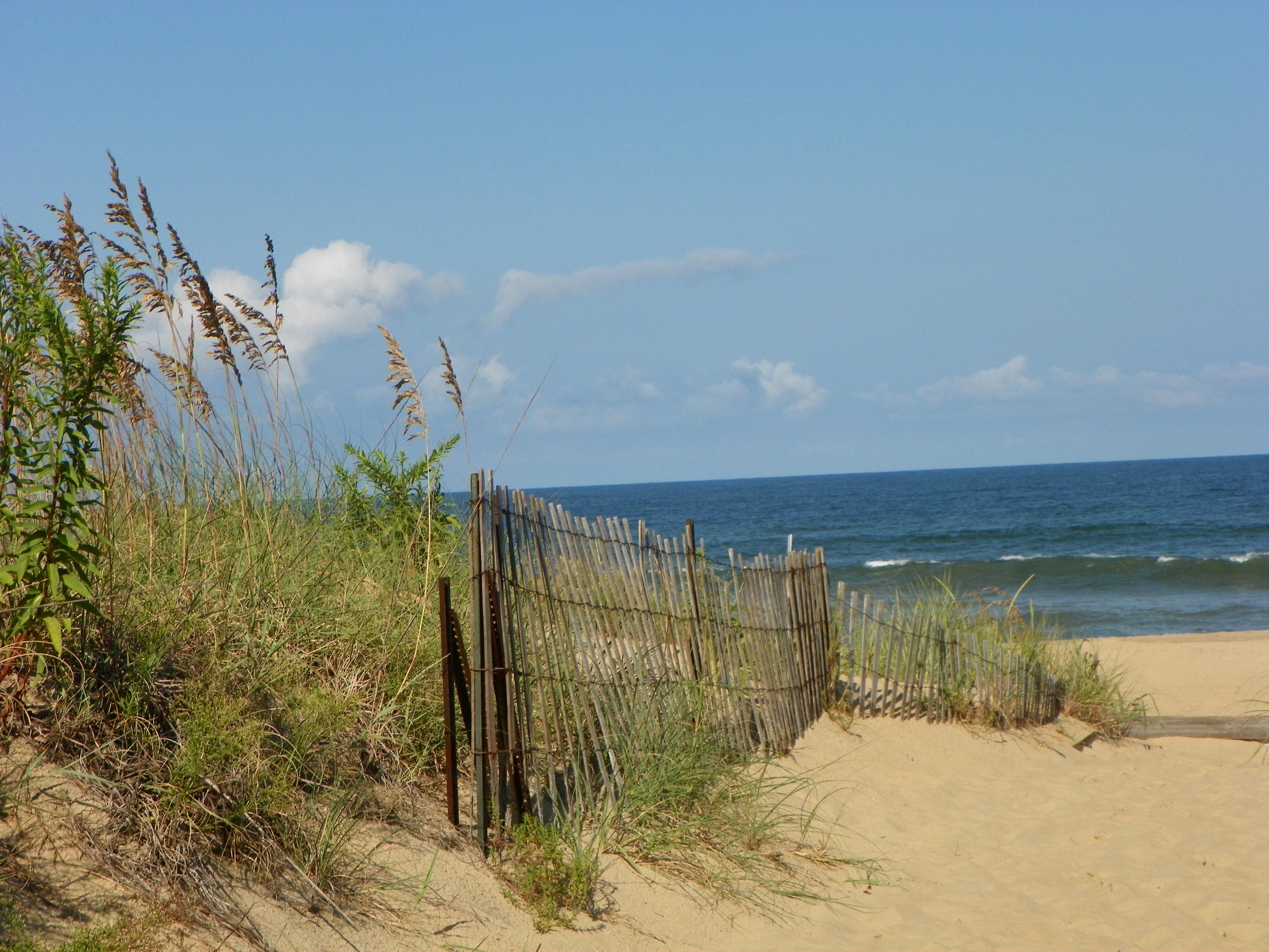 Sandbridge Beach path 2012 051