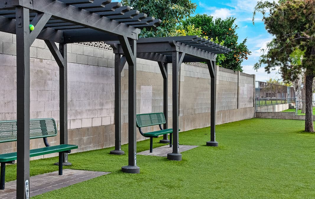 Outdoor space with grass and covered benches