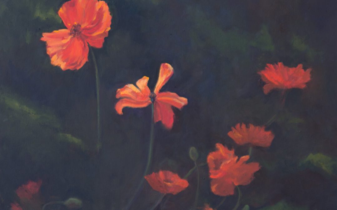 Vibrant Poppies