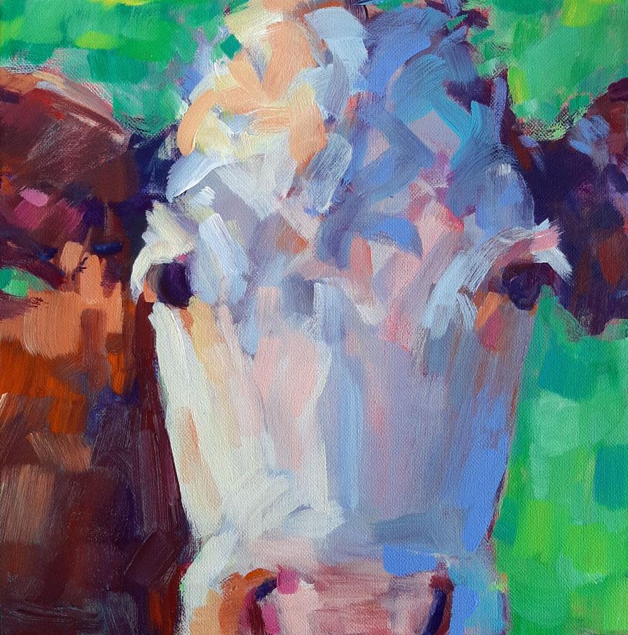 white face cow